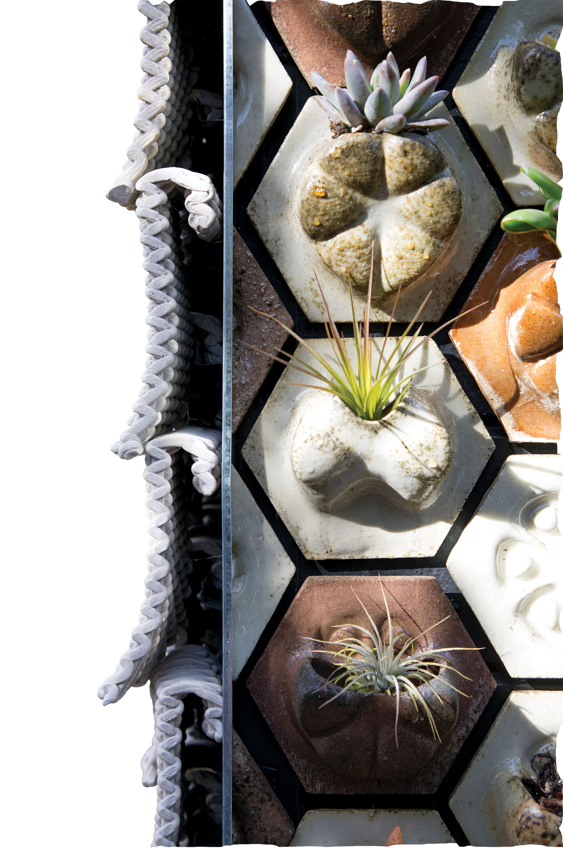 Ronald Rael. Cabin of 3D-Printed Curiosities, detail of ceramic Seed Stitch tile and hexagonal Planter Tiles. Photograph by Matthew Millman.
