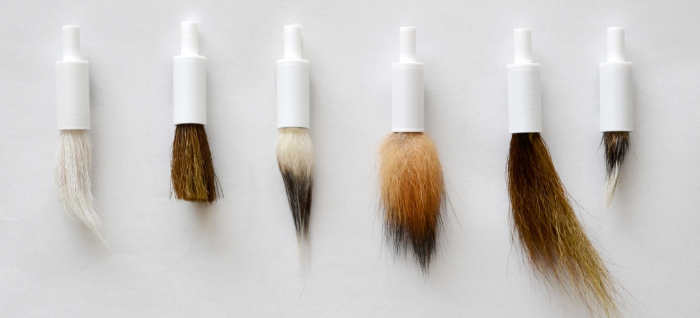 Custom brushes, 2015. 3-D printed shaft, various animal hair. Photo by artist.