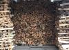 Kristin Muller's wood stack - fuel for her kiln.